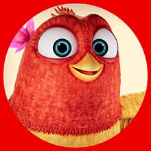 Artículos para Aves