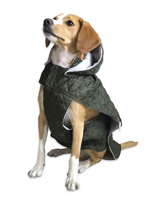 Chaleco para Perro