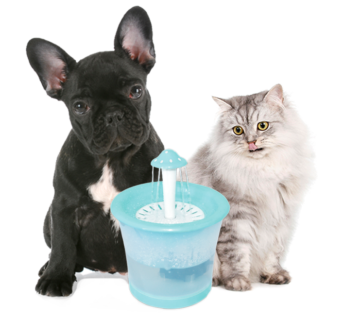 Pet Fountain